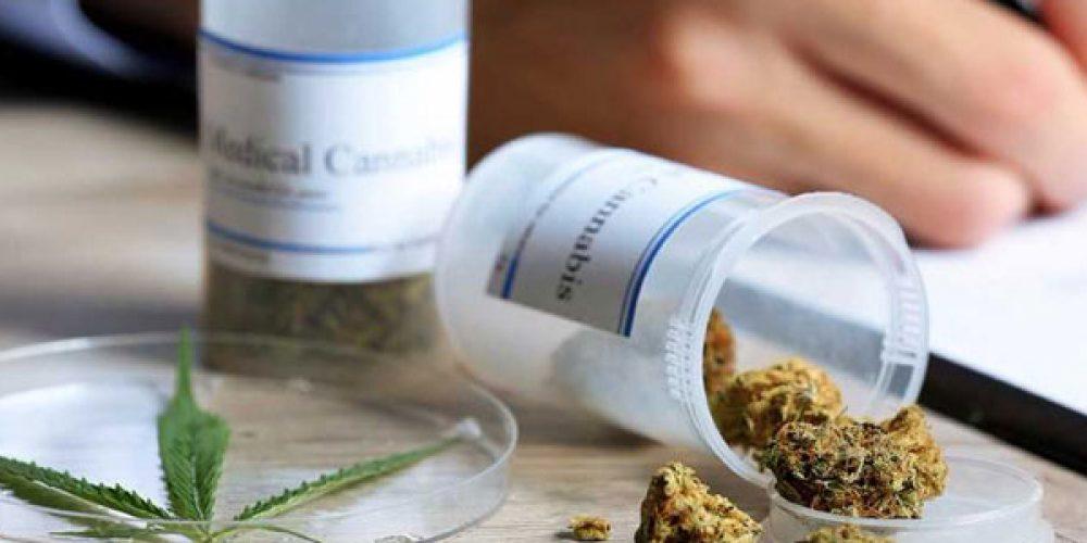 Trouver une boutique spécialisée en ligne pour acheter du cannabis thérapeutique en ligne